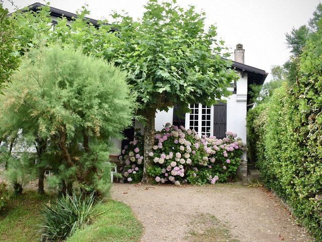 arno-senoner-4ubvEVChFP4-unsplash_cottage garden